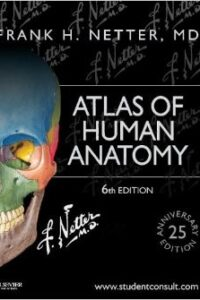 Atlas of Human Anatomy 25th Ed By F H Netter
